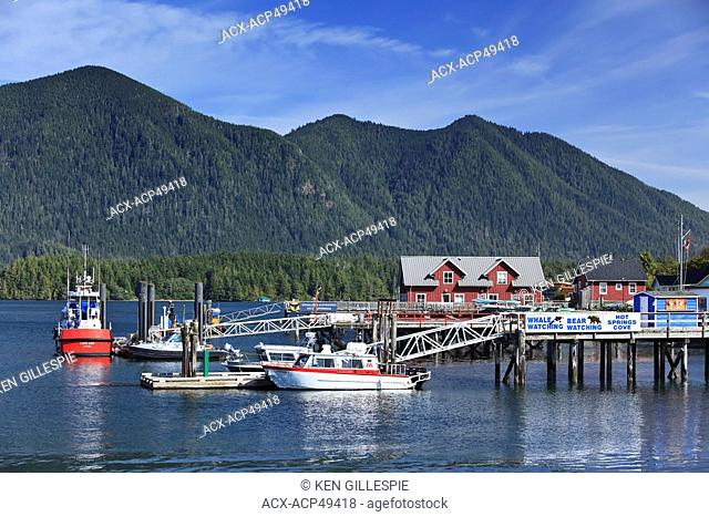 Whale watching boats at Tofino Harbour, Clayoquot Sound, Vancouver Island, British Columbia, Canada