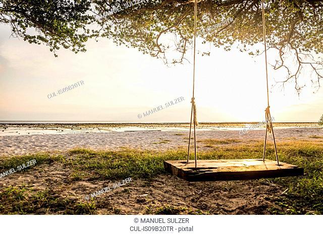Empty beach tree swing at sunset, Gili Trawangan, Lombok, Indonesia