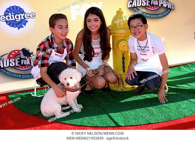 PAWS for Cause FOX TV Special Taping Featuring: Masterchef Junior Contestants,Mitchell,Sean,Natalie Where: Santa Monica, California