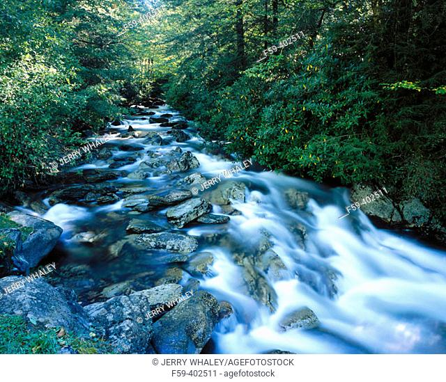 Stream, Newfound Gap Road. Great Smoky Mountains National Park. Tennessee, USA
