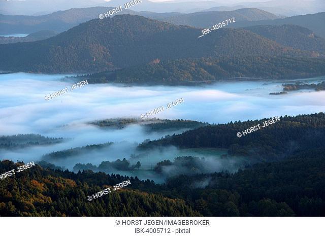 Palatinate Forest, from Wegelnburg castle ruins, Dahn Rockland, Dahn, Palatinate, Rhineland-Palatinate, Germany