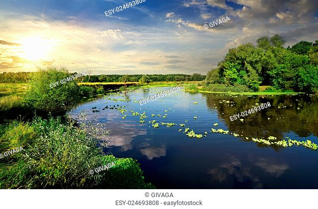 Tranquil evening on a river in summer