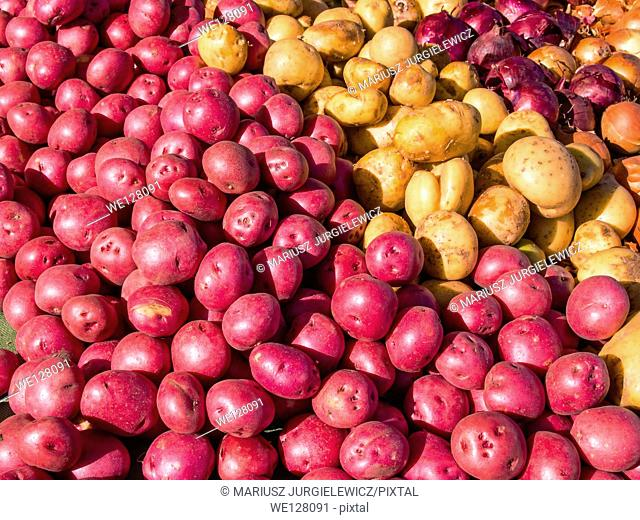 Pile of small organic potatos for sale at local farmers market