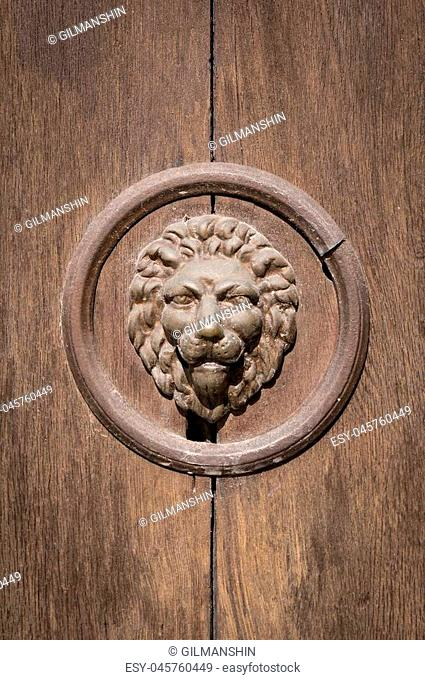 Cast iron door gate design with lion's head