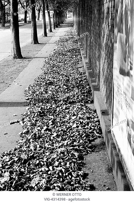 DEUTSCHLAND, BOTTROP, 31.08.1973, Seventies, black and white photo, autumn, autumn leaves on a pavement, avenue, brick wall, Ruhr area