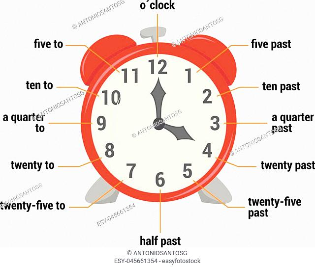 The time vocabulary Vector Illustration. Educational material for primary school students