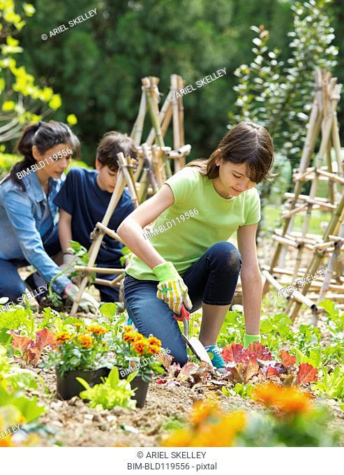 Hispanic family gardening together