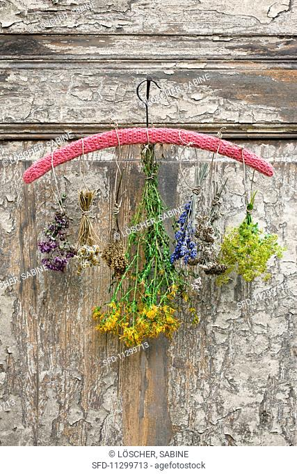 Various bunches of dried herbs hanging on a crocheted hanger on a nail on an old wooden door
