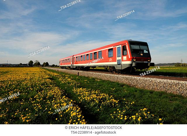 Railcar of the Deutsche Bahn ago dandelion meadow