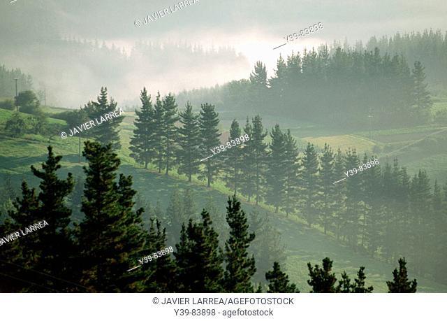 Deba river valley near Bergara in fog as seen from Elgeta. Guipuzcoa, Euskadi, Spain