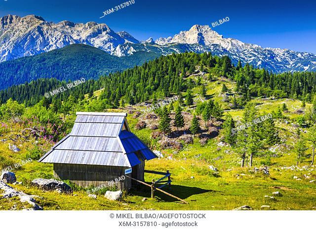 Mountains in summer and huts. Velika Planina sky area. Upper Carniola region. Slovenia, Europe