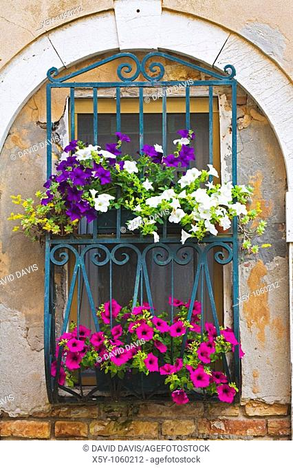 Flowers decorate a window with typical Venetian architecture in Venice Italy
