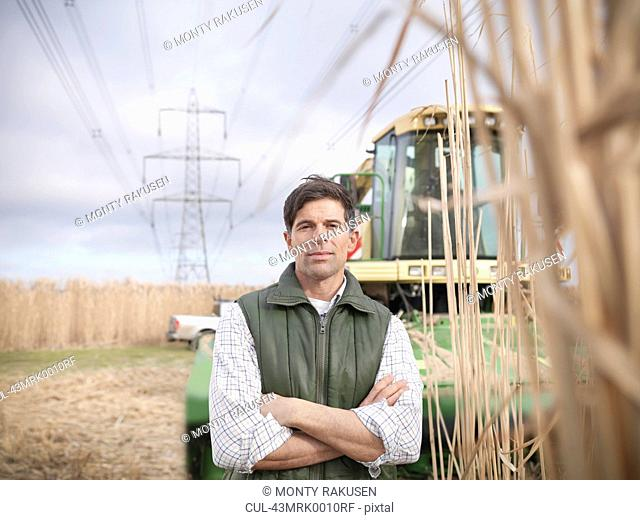 Farmer with tractor in elephant grass