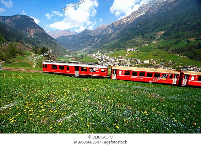 The Bernina Express passing by the village of Privilasco, Val Poschiavo, Switzerland Europe