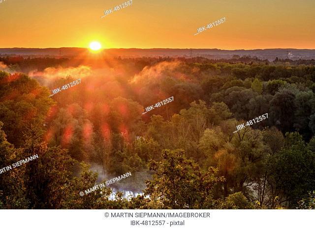 Sunrise over Isar, Isar floodplains, near Freising, Upper Bavaria, Bavaria, Germany