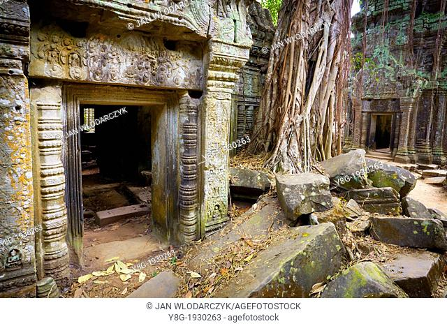 Angkor Temple Complex - ruins of Ta Prohm Temple, Angkor old Khmer Empire, Cambodia, Asia