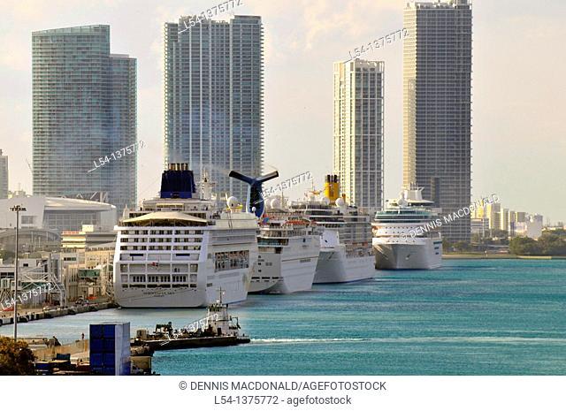 Cruise ships line harbor in Miami Florida