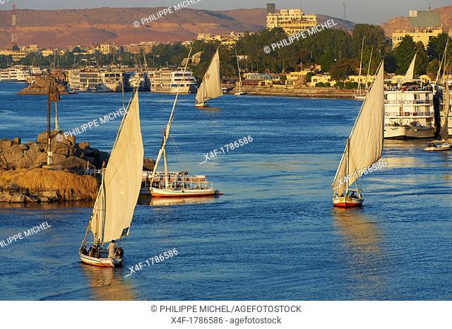 Egypt, Nile valley, Aswan, Feluccas on the Nile River