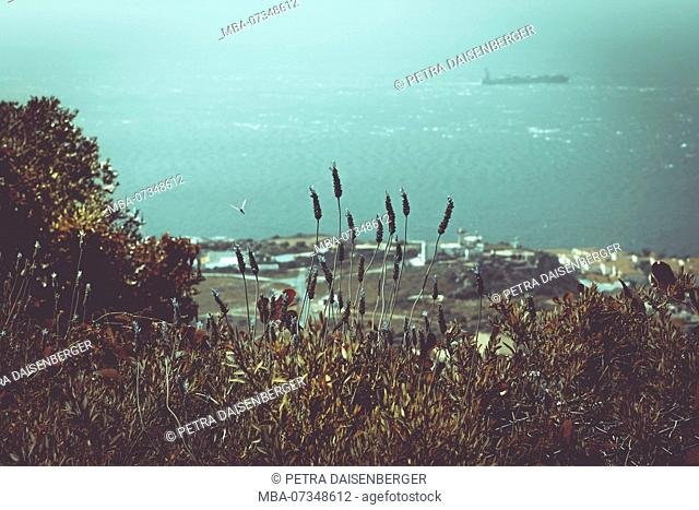 View over the sea from the Rock in Gibraltar