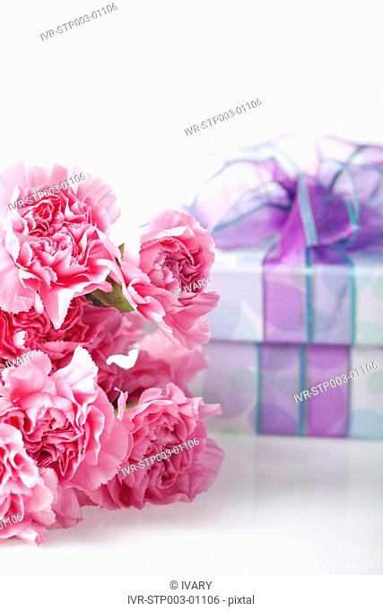 Wrapped Gift Box, Pink Carnation Flowers And Card