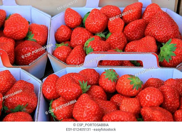 Strawberries in boxes
