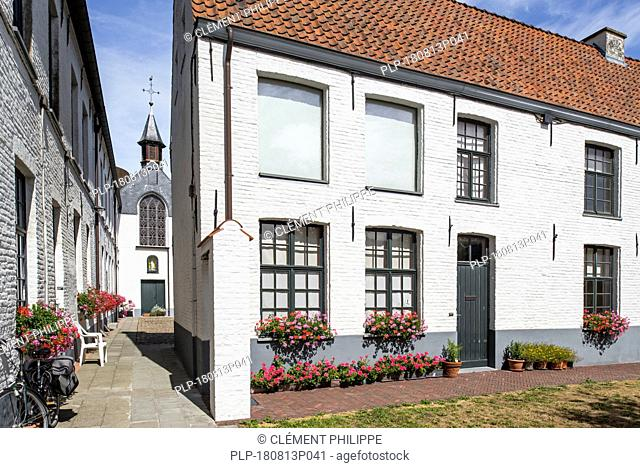Alley with white beguines' houses and chapel in the Beguinage of Oudenaarde, East Flanders, Belgium