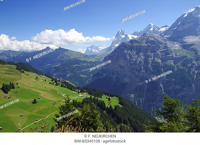 Wetterhorn, Eiger and Moench from the west near Muerren, Switzerland