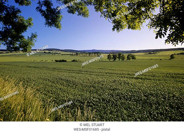 Fields in Marksuhl, Thuringia, Germany