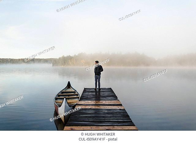 Man standing on pier, looking at view, rear view