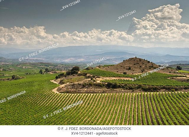 Heredad Ugarte Rioja Winery  Laguardia  La Rioja  Alava  Spain