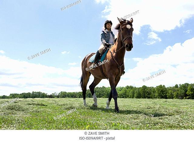 Horse rider on horse