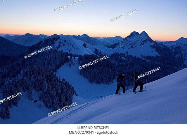 ski tour at the Schöneberg with view to Ross- and Buchstein, close Lenggries, Bavarian Prealps, Upper Bavaria, Bavaria, Germany
