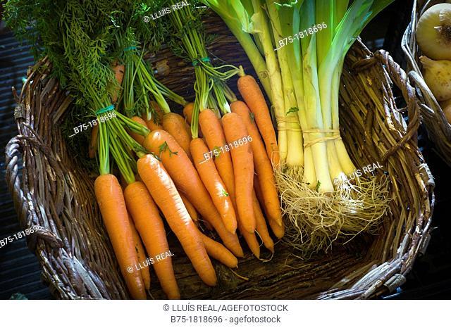 Cesto de verduras con cebollas tiernas y zanahorias , Basket of vegetables with spring onions and carrots