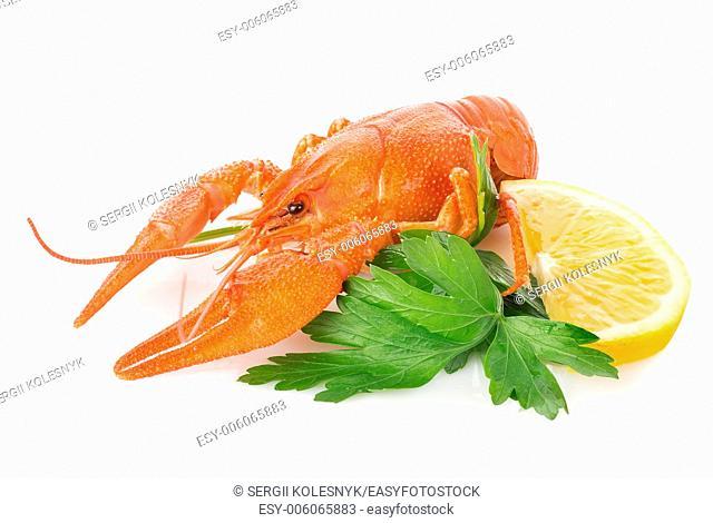 Crawfish and lemon isolated on a white background