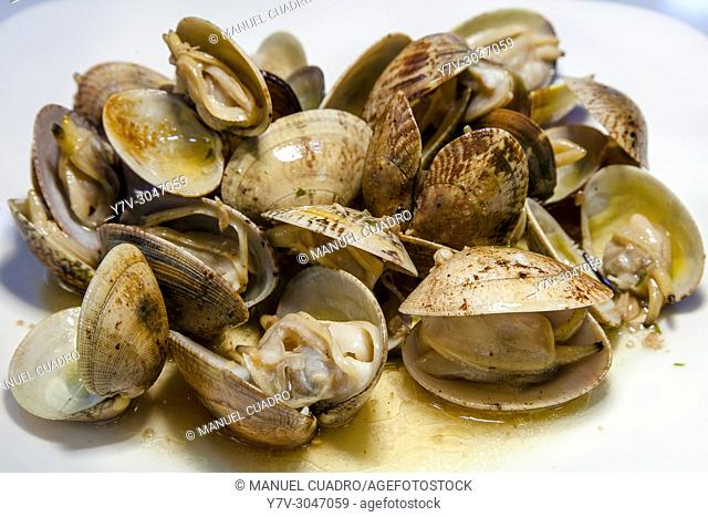 Plato de Almejas a la plancha / Grilled clams. Basque Country, Spain