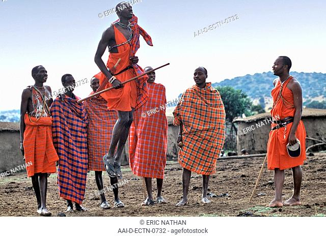 A group of Maasai men doing a traditional dance in the village manyatta in the Maasai Mara in Kenya. The dance is done as a display of the warriors' agility and...