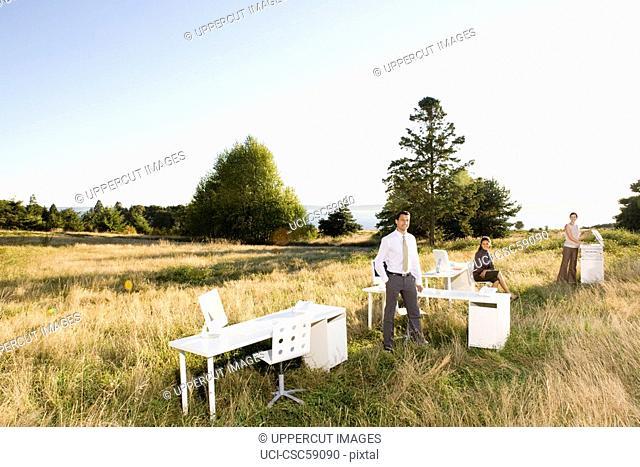 Businesspeople in sunlit field