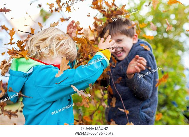 Two little boys throwing autumn leaves