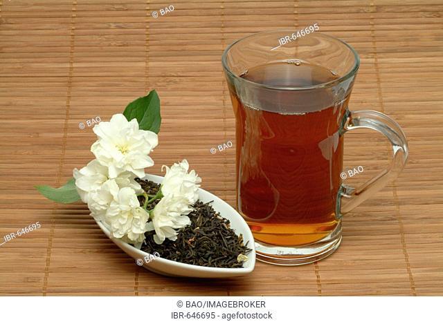 Jasmine (Jasminum officinale), herbal tea