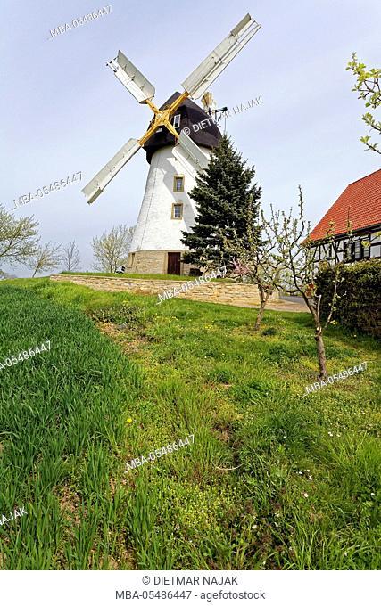 Smock Mill in Bockwitz near the city of Zeitz, Burgenlandkreis, Saxony-Anhalt, Germany