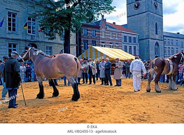 Belgique,Jodoigne,marche,aux,bestiaux
