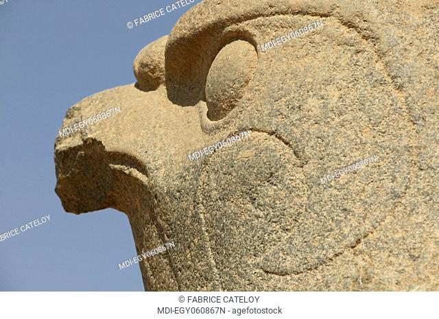 Granite falcon, representing the God Horus, at the entry