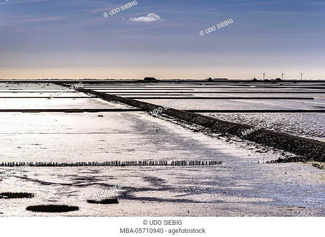 Germany, Schleswig-Holstein, North Frisia, peninsula north beach, Hallig Nordstrandischmoor, Lorendamm, Halligbahn, 'Lorengleise'
