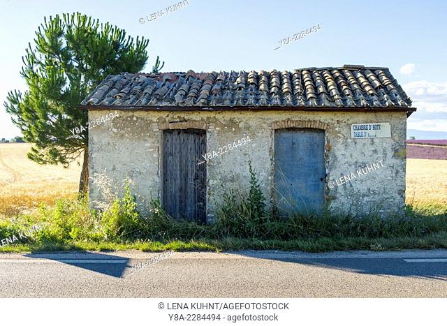 Small abandoned shed on Plateau de Valensole, Alpes-de-Haute-Provence, Provence-Alpes-Côte-d'Azur, France