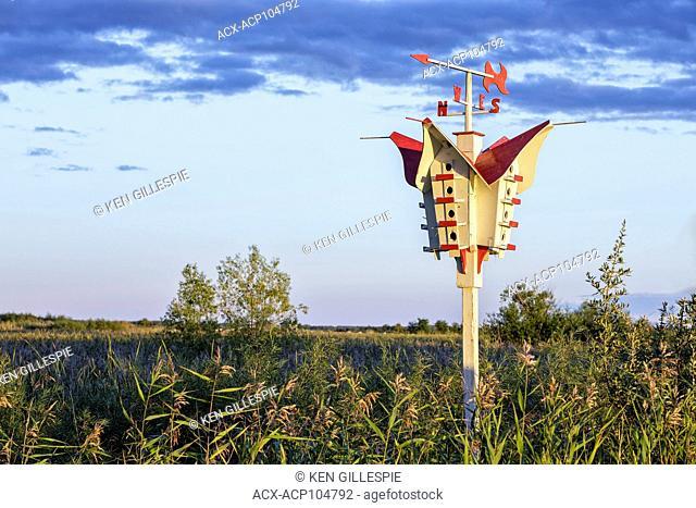 Purple Martin Birdhouse, Oak Hammock Marsh, Manitoba, Canada