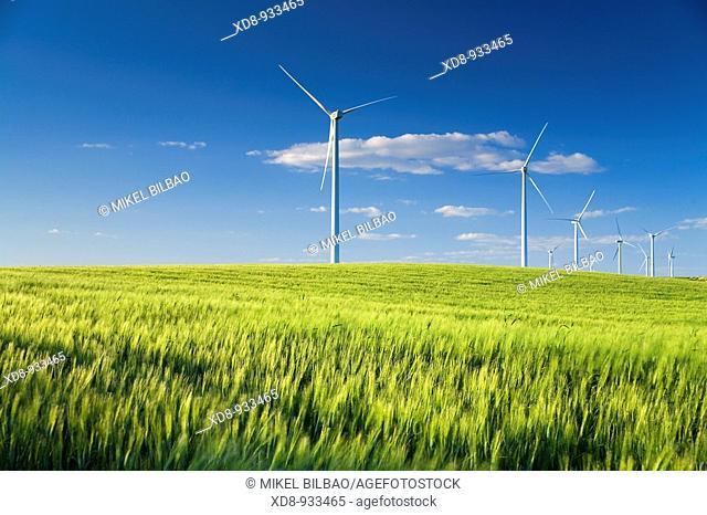 wind turbines at sunset. Near Sanlucar de Barrameda, Cadiz province, Spain, Europe
