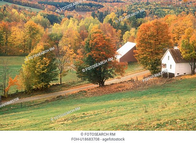 maple trees, farm, South Woodstock, VT, Vermont, Scenic countryside of South Woodstock in autumn