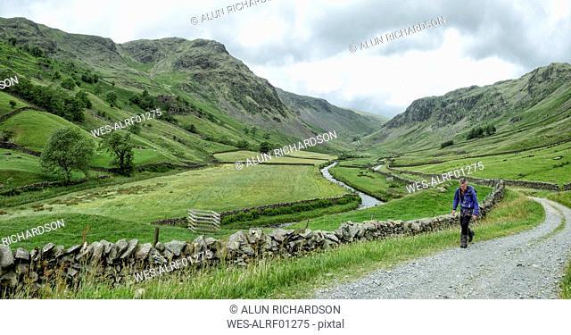 UK, Lake District, Longsleddale valley, mature man walking on field path in rural landscape