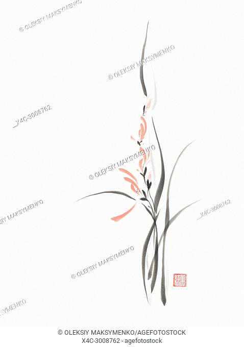 Elegant coral red orchid flowers artistic oriental style illustration, Japanese Zen Sumi-e black ink floral painting on white rice paper background