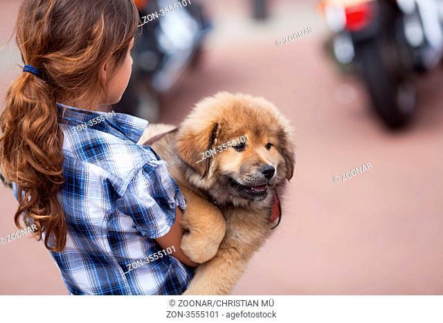 junges hübsches Mädchen trägt ihren Elo-Welpen im Arm